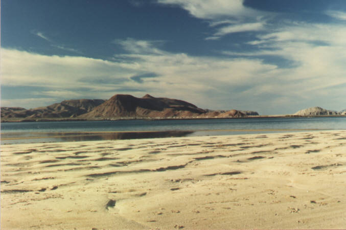 Alphonsina's Beach - Northern Sea of Cortez - click to enlarge