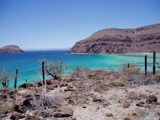 Sea of Cortez - click to see more photos