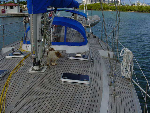 """Daydream"" Deck Looking Aft - click to enlarge"