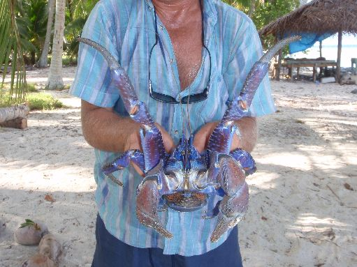 Jul '09 - Wayne with a coconut crab - click to enlarge