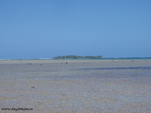 Jul '09 - Standing on the ringing reef; looking in towards a motu - click to enlarge