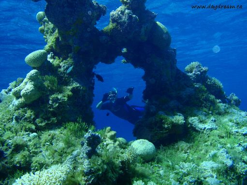 Jul '09 - Seven Islands - Snorkeling among the fantastic coral formations - click to enlarge