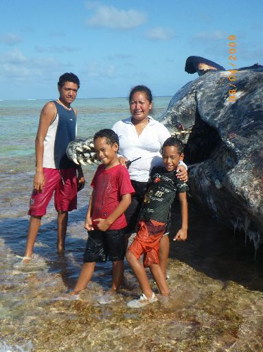 Jun '09 - The Samuela family with the dead sperm whale - click to enlarge
