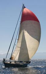 Daydream Sailing Baja